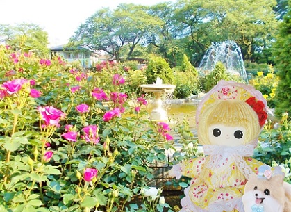 ピンクのバラと噴水
