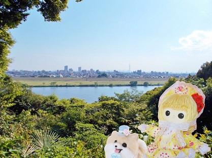 江戸川の向こうにスカイツリー