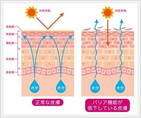 1回の湿布で24時間保湿!肌の水分量65%upが、認められた抗シワ試験済み・美容保湿クリーム【LILA・リラ】効果・口コミ。