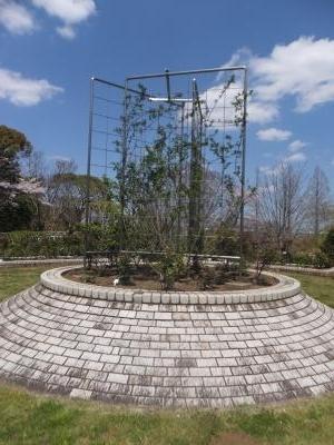 千葉市緑化植物園_(5)_convert_20190413202627