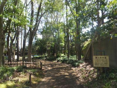 千葉市緑化植物園_(19)_convert_20190413204811