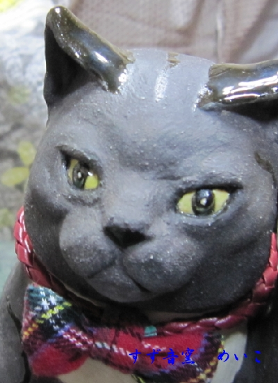 キリットしたタキシード猫招き