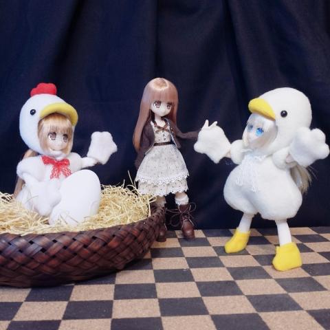 2019-03-10-鶏ネイリー登場