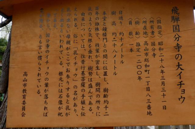 飛騨国分寺33