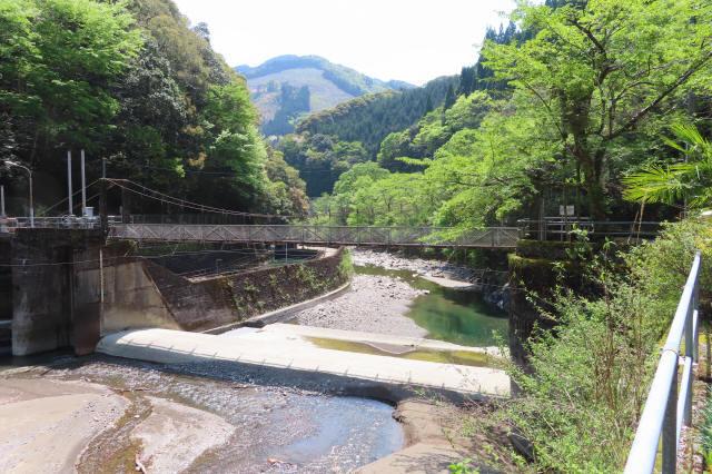 板取取水ダムの吊橋5