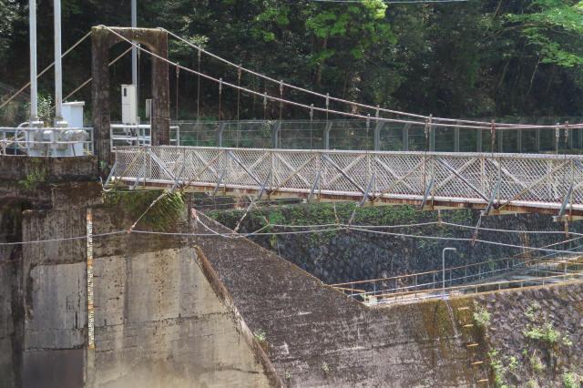 板取取水ダムの吊橋4