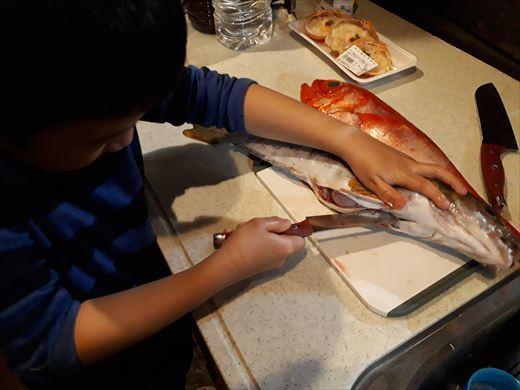 魚を捌く (6)