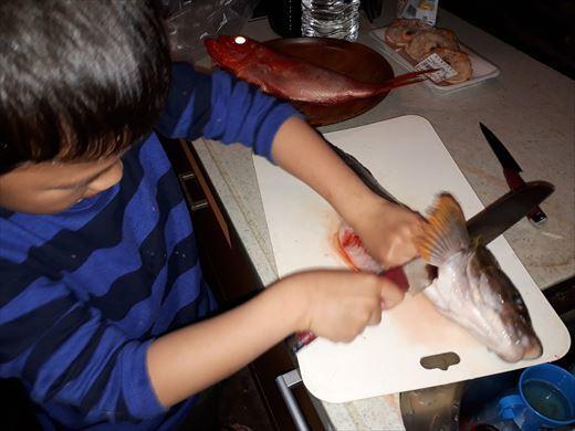 魚を捌く (10)