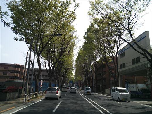 多摩川パンコイ (5)