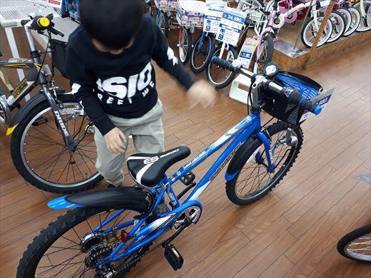 自転車 (3)