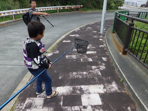 神津島1日目釣り (10)