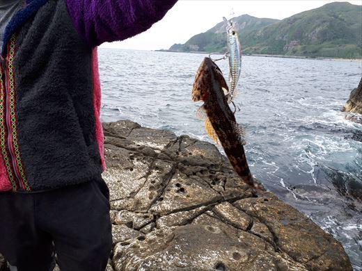 神津島の磯釣り (1)