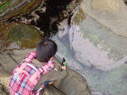 神津島の磯釣り (3)