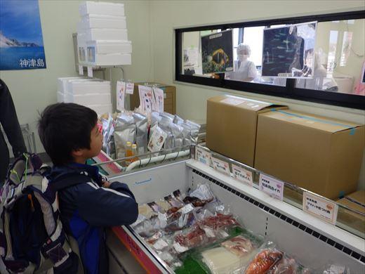 神津島港釣り1 (4)