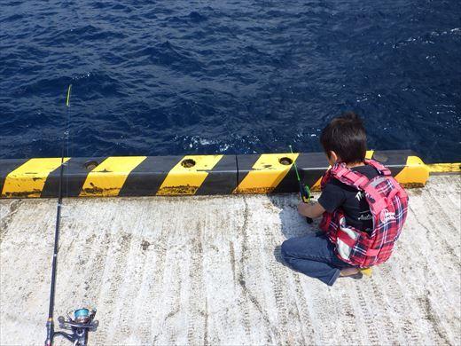 神津島港釣り1 (10)