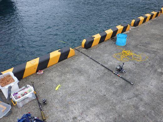 神津島港釣り1 (17)