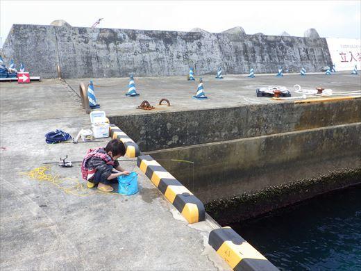 神津島港釣り1 (20)