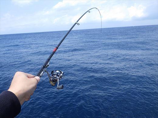 神津島港釣り1 (29)