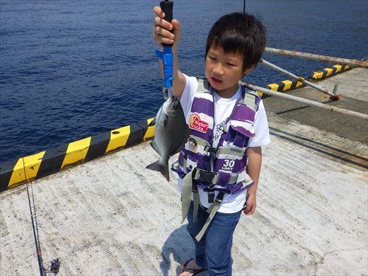 神津島港で釣り (4)