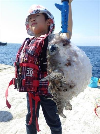 神津島港で釣り (13)