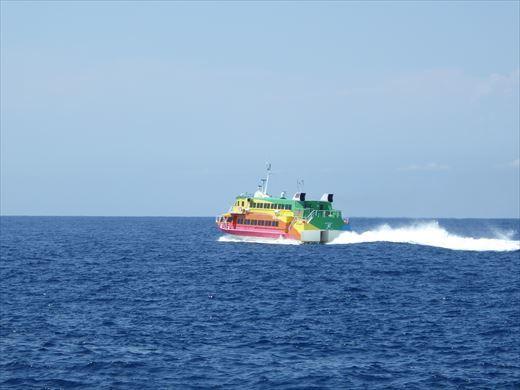 神津島港で釣り (10)