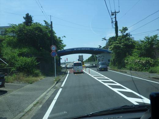 城ヶ島釣り (9)