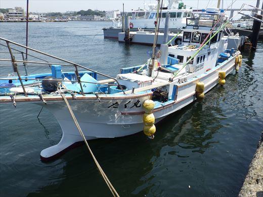 城ヶ島釣り (12)