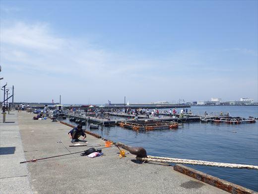 城ヶ島釣り (14)