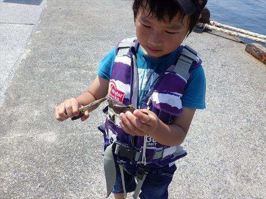 城ヶ島釣り (22)