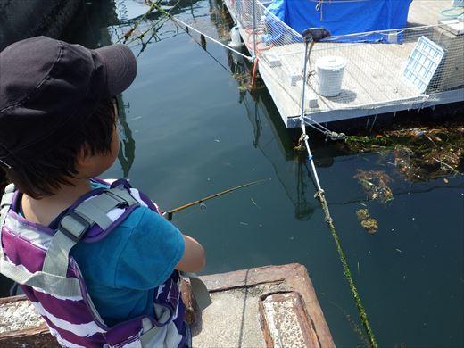 城ヶ島釣り (30)