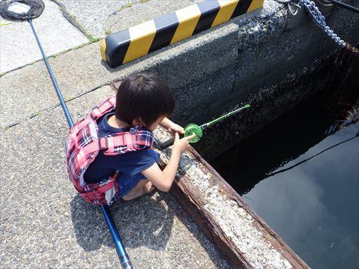 城ヶ島釣り (31)