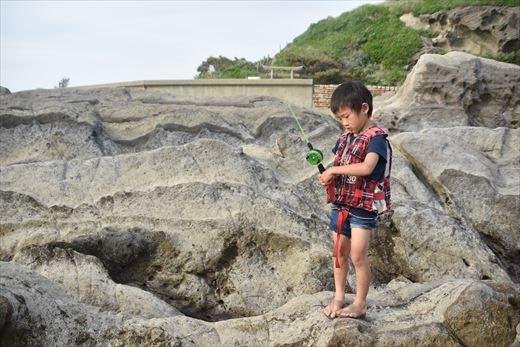城ヶ島の潮だまり (1)