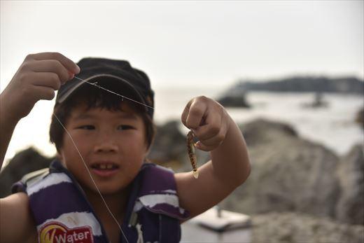 城ヶ島釣り (4)