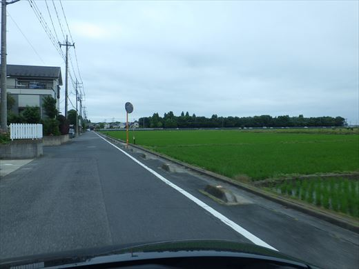 松伏総合公園 (3)