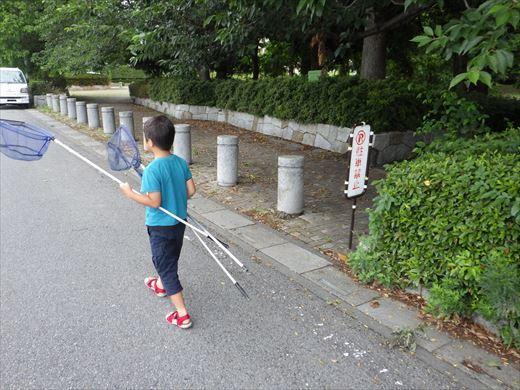 松伏総合公園 (4)