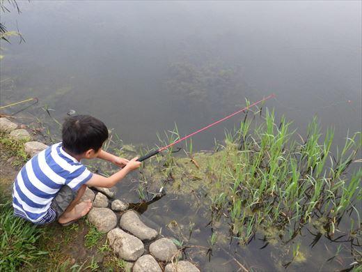 松伏総合公園 (20)