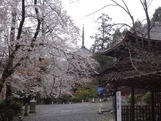三井寺 その6