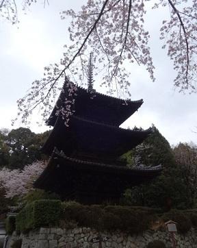 三井寺 その8