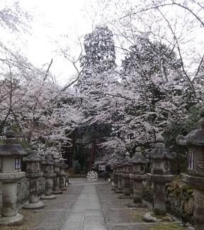 三井寺 その10