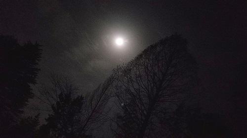 八幡山から望んだ月は