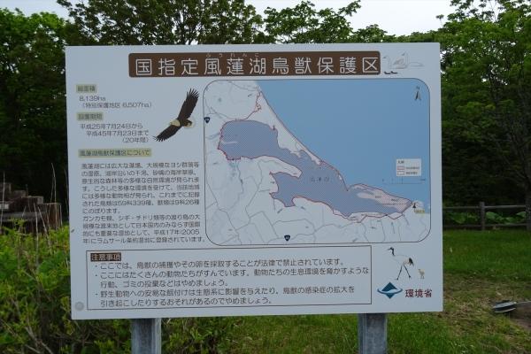 風連湖20190612