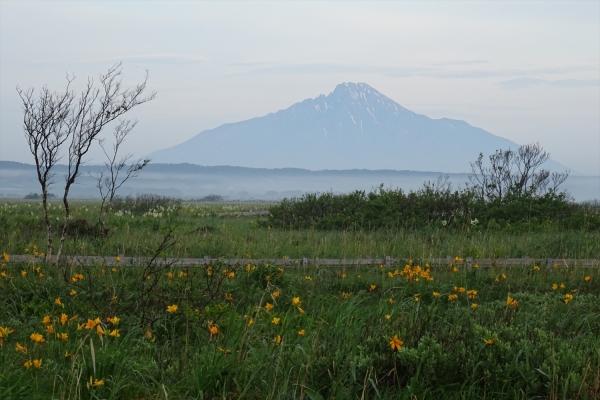 サロベツ湿原から利尻富士を望む20190615