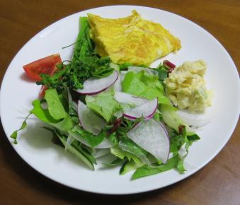 生野菜サラダ5月