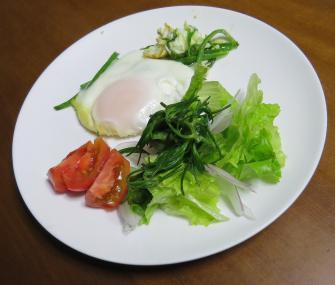 オカヒジキ入り生野菜サラダ
