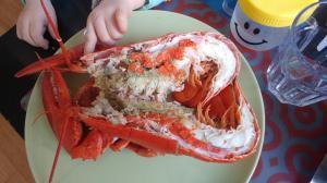 lobster-02