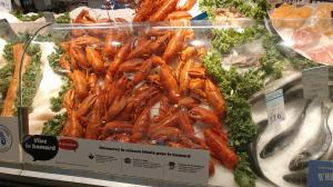 lobster-05