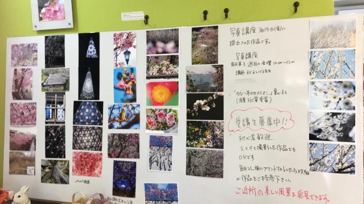 まちもりカフェ写真講座作品201903