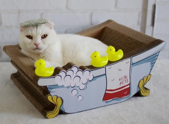 良い湯だな^d^あsだsだあsd