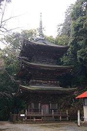 190311桜川 小山寺大杉⑮