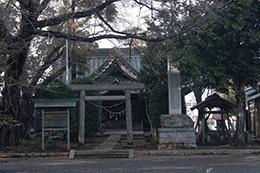 190311三所神社ケヤキ⑦